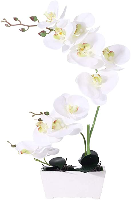 Orchid Plant for Artificial Flowers,White Orchid Arrangement ,Orquidea Artificial Orchid Plant Perfect Packaging 11 Heads 4 Color with Solid Plastic Vase for Environmental Protection(White)
