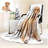 Funny picnic blanket Chihuahua Dog Relaxing and Lying in Wellness Spa Fashion Puppy Comic Print soft throw blanket Magenta Baby Pink size:51''x31.5''