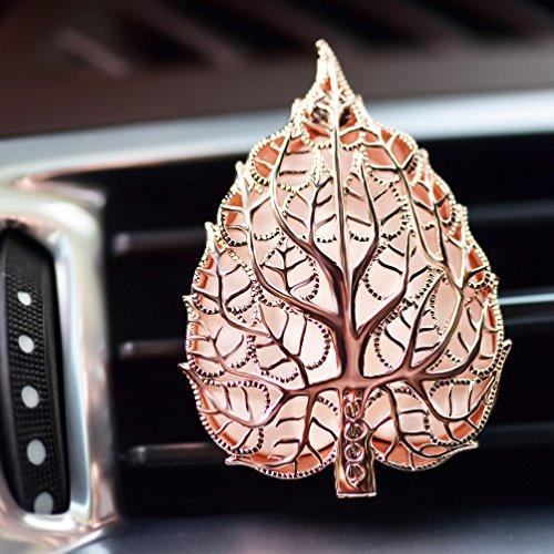 natural air fresheners for car - 9
