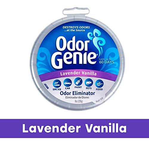 DampRid FG69LV Odor Genie