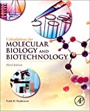 Calculations for Molecular Biology and Biotechnology, Third Edition