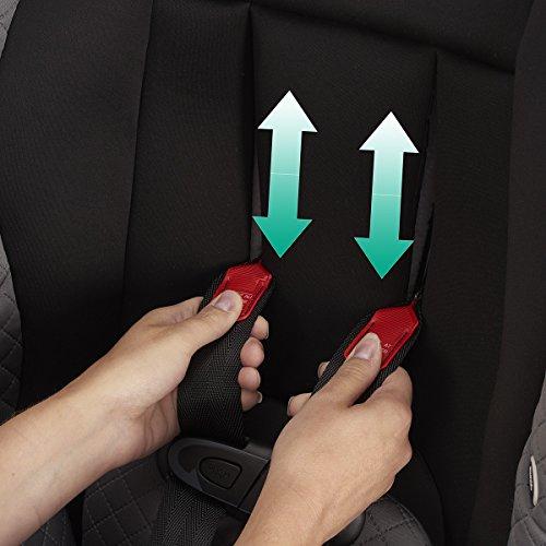 Evenflo Triumph LX Convertible Car Seat, Charleston