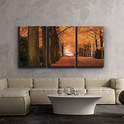3 Piece Canvas Print - Contemporary Art, Modern Wall Decor - Autumn orange leaved trees line path - Giclee Artwork - Gallery Wrapped Wood Stretcher Bars - Ready to Hang- Wall26 - 24