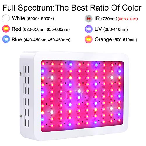 King Plus 1000w LED Grow Light Double Chips Full Spectrum with UV&IR for Greenhouse Indoor Plant Veg and Flower by KingLED (Image #3)