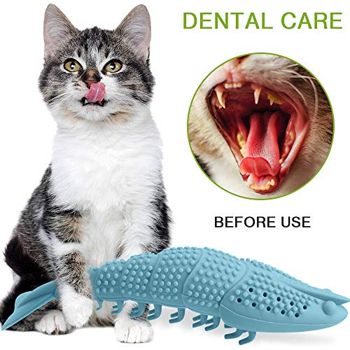 Wisedom Cat Toothbrush Catnip Toy Dental Care Refillable Catnip Interactive Playing Feeding Toy with Bell for Kitten Kitty Cats Teeth Cleaning 8