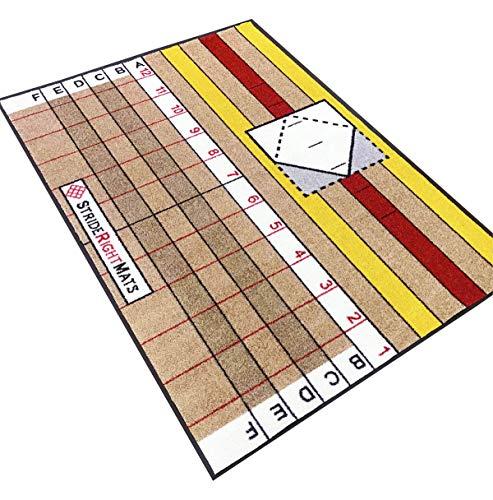 StrideRight Hitting Mat Advanced Hitter (Full Box) (4.5' x 6')
