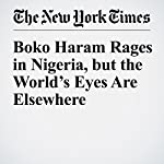 Boko Haram Rages in Nigeria, but the World's Eyes Are Elsewhere | Dionne Searcey