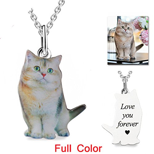 lu hotsale Custom Pet Photo Necklace Full Color 925 Sterling Silver Dog Tag Pendants Necklaces for Women Men Memorial Christmas (Pendant Color Photo Dog Tag)