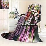 YOYI-HOME Fashion Designs Warm Duplex Printed Blanket Chinese Spring Festival Window Warm Microfiber All Season Sofa,Air-Conditioner Room/39.5'' W by 59'' H