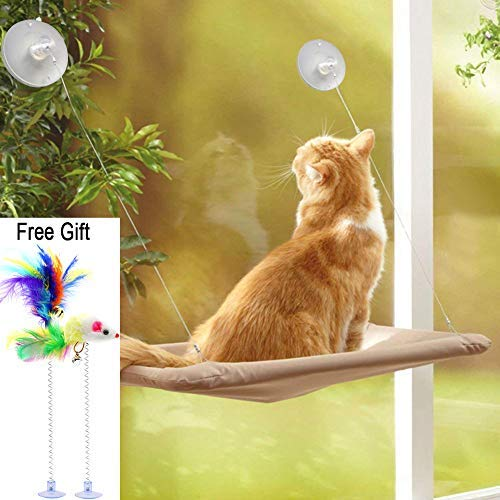 ZALALOVA Cat Window Perch, Cat Window Seat Bed Hammock Space Saving Design with 2Pcs Funny Cat Toys Suction Cups Cat Shelves All Around 360° Sunbath Holds Up to 50lbs for Any Cat Size