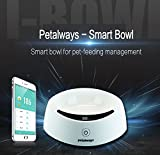 Petalways PCare iBowl Smart Pet Bowl ABS Antibacterial LCD Acuurately Measure APP Diet Analysis Healthy Pet Food Feeding Bowl