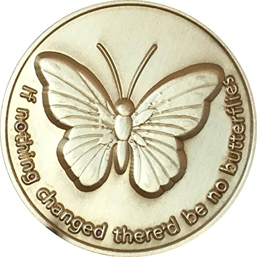 RecoveryChip If Nothing Changed There'd Be No Butterflies Bronze Serenity Prayer Medallion Butterfly Pocket Token -