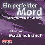 Ein perfekter Mord | Wolfgang Schorlau