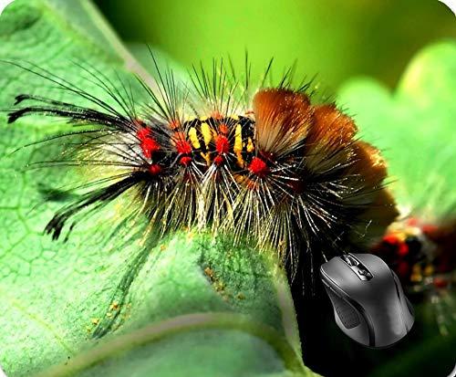 (SHAQ Anacapa Island Tussock Moth Caterpillar Mouse Pad 8.6 X 7.1 in)