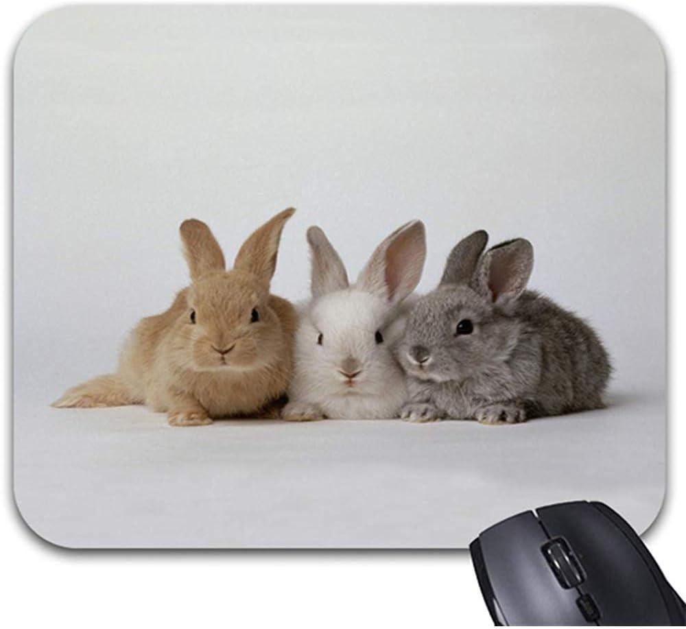 Smity Mouse Pad 30 * 25 * 0.3 cm Alfombrilla de ratón Alfombrillas de ratón de diseño Moderno Conejitos Alfombrilla de ratón - Accesorio de Escritorio de Office Gaming