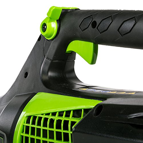 Greenworks PRO 145 MPH 580 Cordless Not