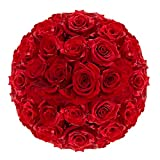GlobalRose 100 Red Roses- Vibrant and Bright Red Blooms- Fresh Flowers Express Delivery)