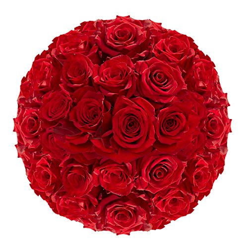 GlobalRose 100 Red Roses- Fresh Flowers Express Delivery- Vibrant and Bright Red Blooms