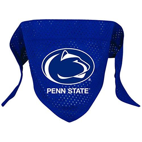 NCAA Penn State Nittany Lions Pet Bandana, Team Color, Large