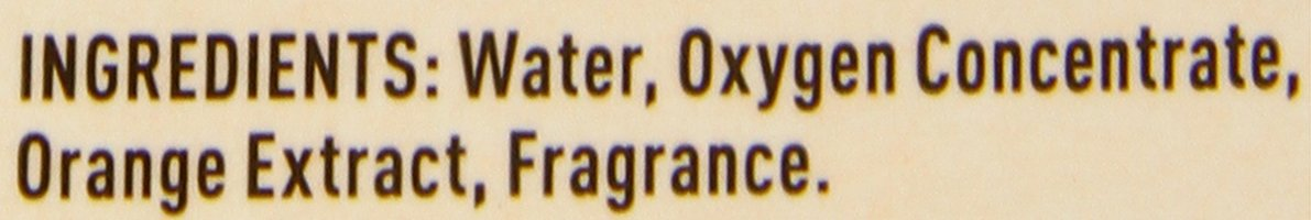 Nature's Miracle Dog Stain And Odor Remover, Oxy Formula, With Fresh Orange Scent, 32 fl oz by Nature's Miracle (Image #2)