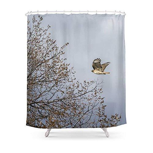 Breezming Red Tailed Hawk in Flight Shower Curtain 60