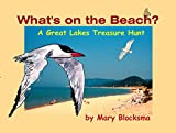 img - for What's On the Beach?: A Great Lakes Treasure Hunt book / textbook / text book