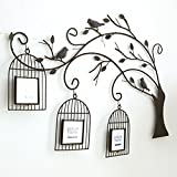 European-style bird cage tree photo wall/ creative living room wall photo frame-A