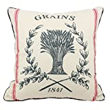JuniperLab Vintage Farmhouse Grain Sack Cushion Covers French Strips Label Style Primitive Throw Pillow Cases 16'' Rustic Grains (Red)