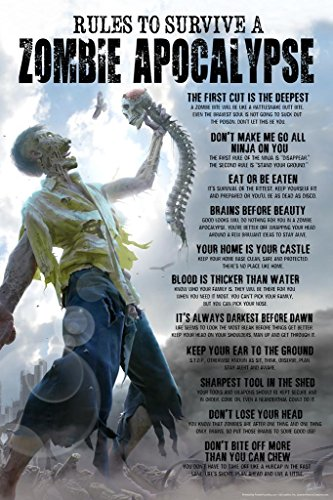 Rules To Survive A Zombie Apocalypse Horror Funny Poster 24x