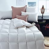 Luxury White Goose Down Comforter,Queen Size,Super Fuffly,55Oz Fill Weight, 100% Pure Cotton Cover, White Color (QUEEN:90X90inches)