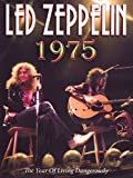 Led Zeppelin: 1975 a Year of Living Dangerously