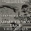 Something like the Gods: A Cultural History of the Athlete from Achilles to LeBron Audiobook by Stephen Amidon Narrated by Ron Butler