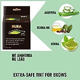 MINA ibrow Henna Dark Brown Regular Pack & Coloring Kit