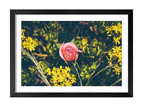 1 Dz Yellow Roses - Yellow Flowers One Pink Rose - Natural Scenery Art Print Home Decor Wooden Frame Poster(Black Frame 16x24inch)