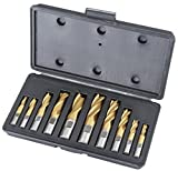 Grizzly G9763 10-Piece 2 and 4 Flute End Mill Set, HSS/Tin