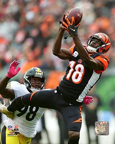 (A.J. Green Cincinnati Bengals Action Photo (11