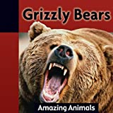 Grizzly Bears, Jacqueline Dineen, 1605961582