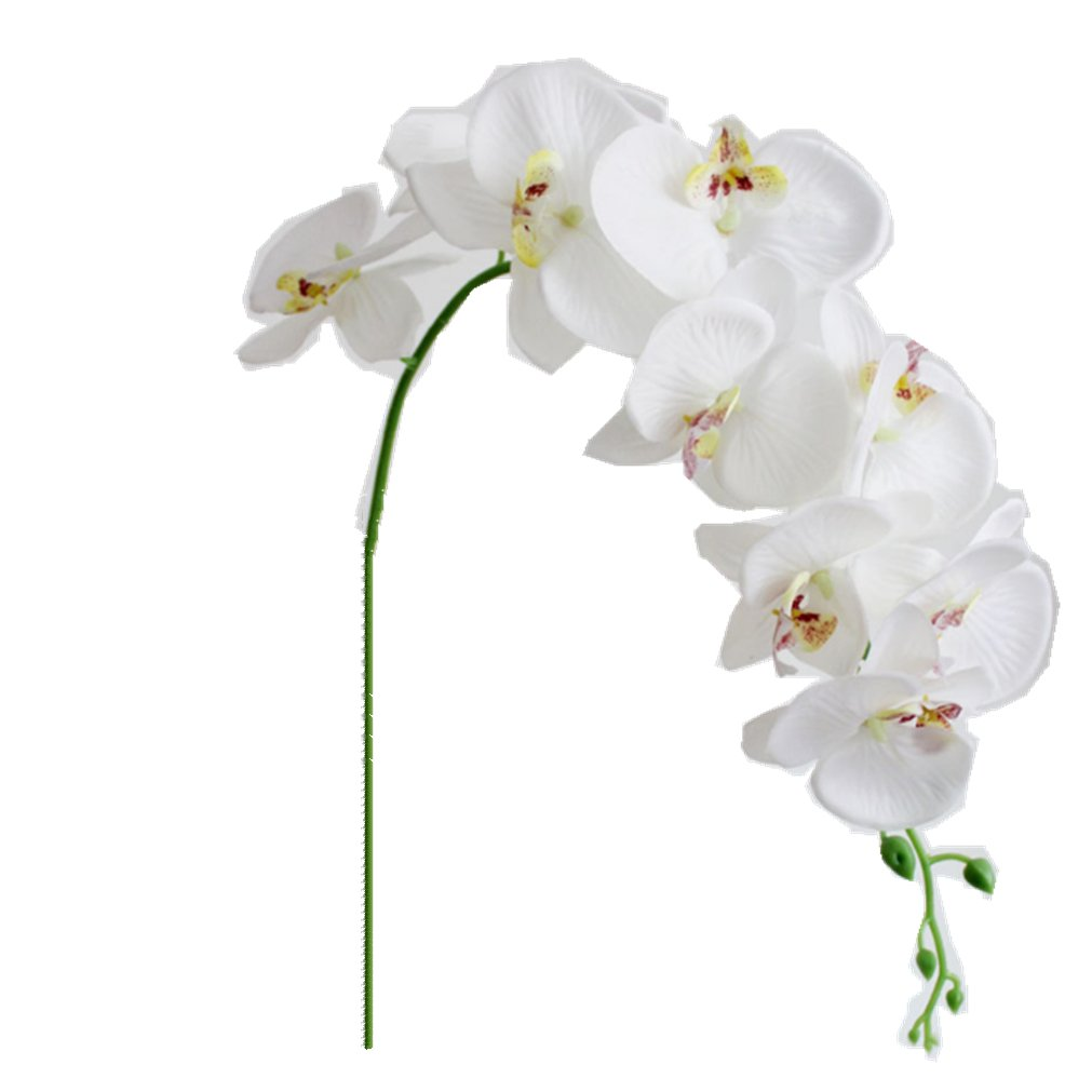 Amazon Ximkee 1 X Artificial Butterfly Orchid Flower Plant Home