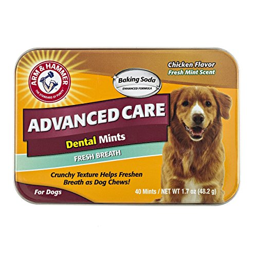 (Arm & Hammer Dog Dental Care Fresh Breath Dental Mints for Dogs | Fresh Doggie Breath Without Brushing, 1.7 ounces (40 Pcs), Chicken Flavor)