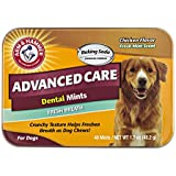 Arm & Hammer Dog Dental Care Fresh Breath Bone-Shaped Dental Mints for Dogs | Fresh Doggie Breath Without Brushing, 1.7 ounces (40 Pcs), Chicken Flavor