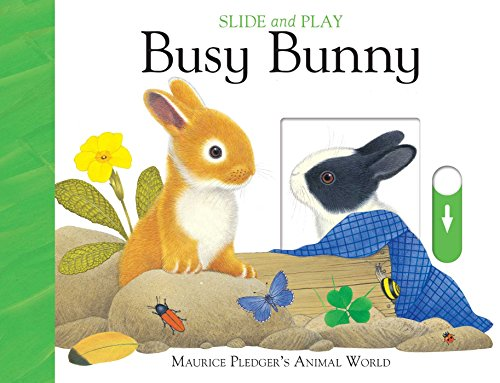 Slide and Play: Busy Bunny (Slide & - Busy Bunny
