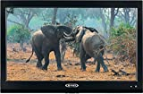 Image of Jensen JTV19DC HD Ready 19 Inch 12V DC RV LED TV with Integrated HDTV (ATSC) Tuner, HD Ready (1080p, 720p, 480p), 1366 x 768 Full HD, Dual Function Wireless Remote Control, Black