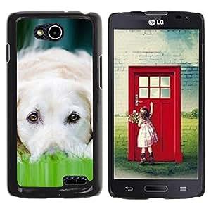 PC/Aluminum Funda Carcasa protectora para LG OPTIMUS L90 / D415 Labrador Dog Pet Canine White / JUSTGO PHONE PROTECTOR