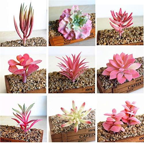 Artificial Plants Funpa 12pcs Artificial Succulent Fashionable