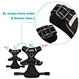 WINSEE Dog Harness No Pull, Pet Harnesses with