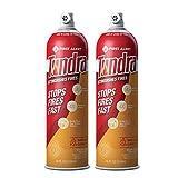 First Alert Fire Extinguisher | TundraFireExtinguishing Aerosol Spray, Pack of 2, AF400-2