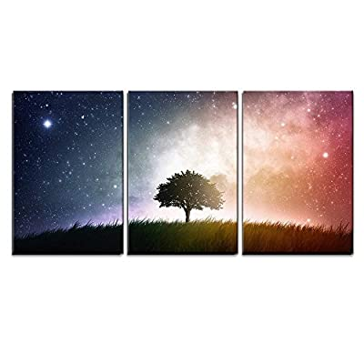 3 Piece Canvas Wall Art - a Single Tree in a Field with Beautiful Space Background - Modern Home Art Stretched and Framed Ready to Hang - 16