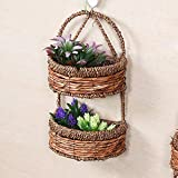 Agordo 2-Layers Wall Hanging Holder Storage Shelf Basket Flower Pots Hanger Home Decor