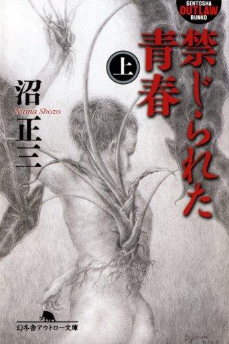 禁じられた青春〈上〉 (幻冬舎アウトロー文庫)