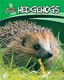 Hedgehogs (British Wildlife)
